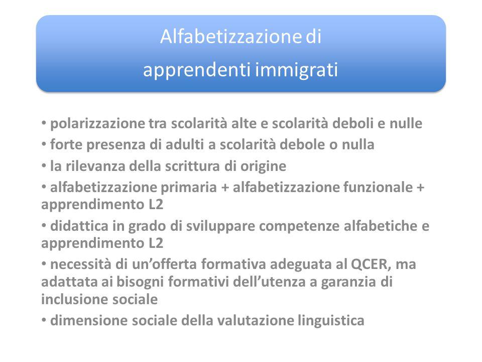 Alfabetizzazione di apprendenti immigrati polarizzazione tra scolarità alte e scolarità deboli e nulle forte presenza di adulti a scolarità debole o n