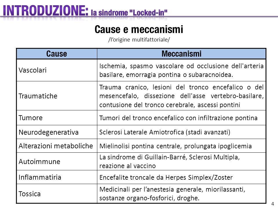 CauseMeccanismi Vascolari Ischemia, spasmo vascolare od occlusione dell'arteria basilare, emorragia pontina o subaracnoidea. Traumatiche Trauma cranic