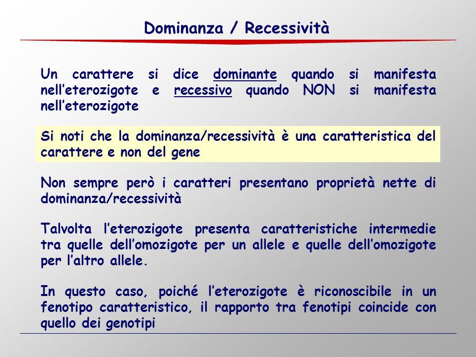 Dominanza / Recessività Un carattere si dice dominante quando si manifesta nell'eterozigote e recessivo quando NON si manifesta nell'eterozigote Non s