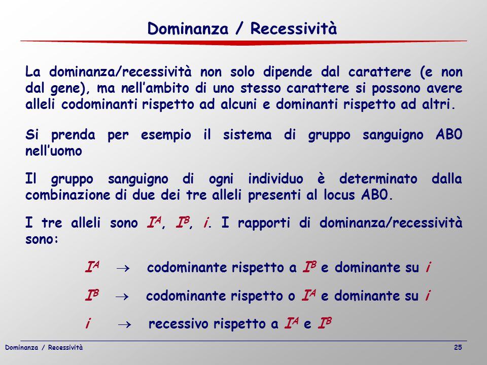 La dominanza/recessività non solo dipende dal carattere (e non dal gene), ma nell'ambito di uno stesso carattere si possono avere alleli codominanti r