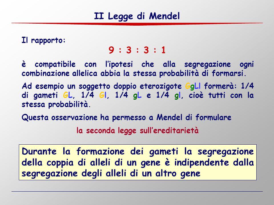 II Legge di Mendel Durante la formazione dei gameti la segregazione della coppia di alleli di un gene è indipendente dalla segregazione degli alleli d
