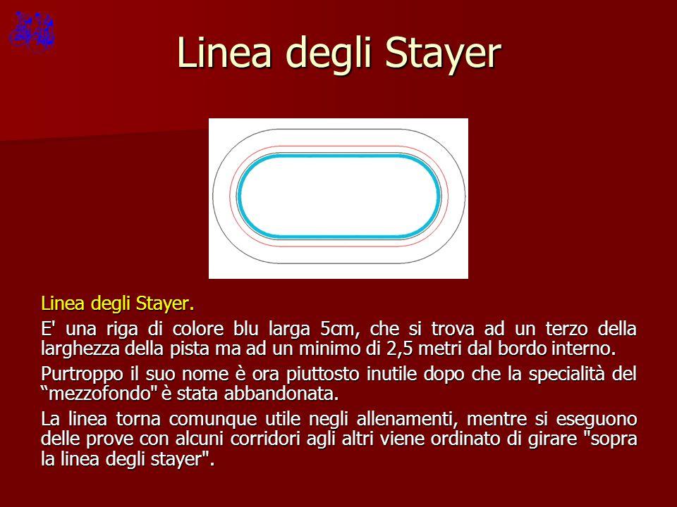 Linea degli Stayer Linea degli Stayer. E' una riga di colore blu larga 5cm, che si trova ad un terzo della larghezza della pista ma ad un minimo di 2,