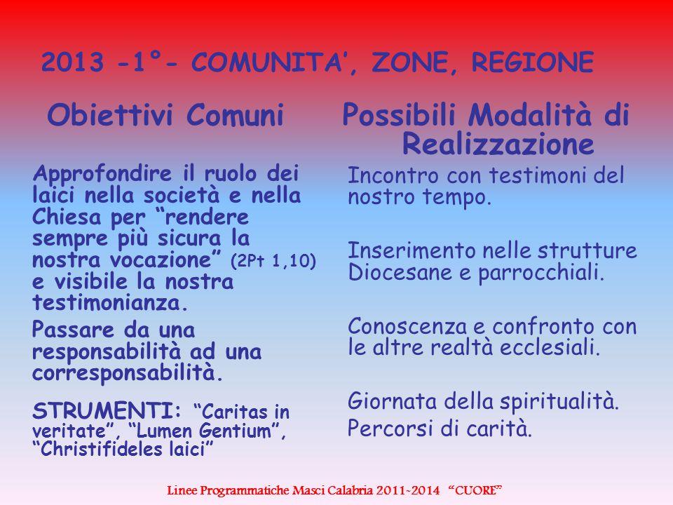 2013 -1°- COMUNITA', ZONE, REGIONE Obiettivi Comuni Approfondire il ruolo dei laici nella società e nella Chiesa per rendere sempre più sicura la nostra vocazione (2Pt 1,10) e visibile la nostra testimonianza.