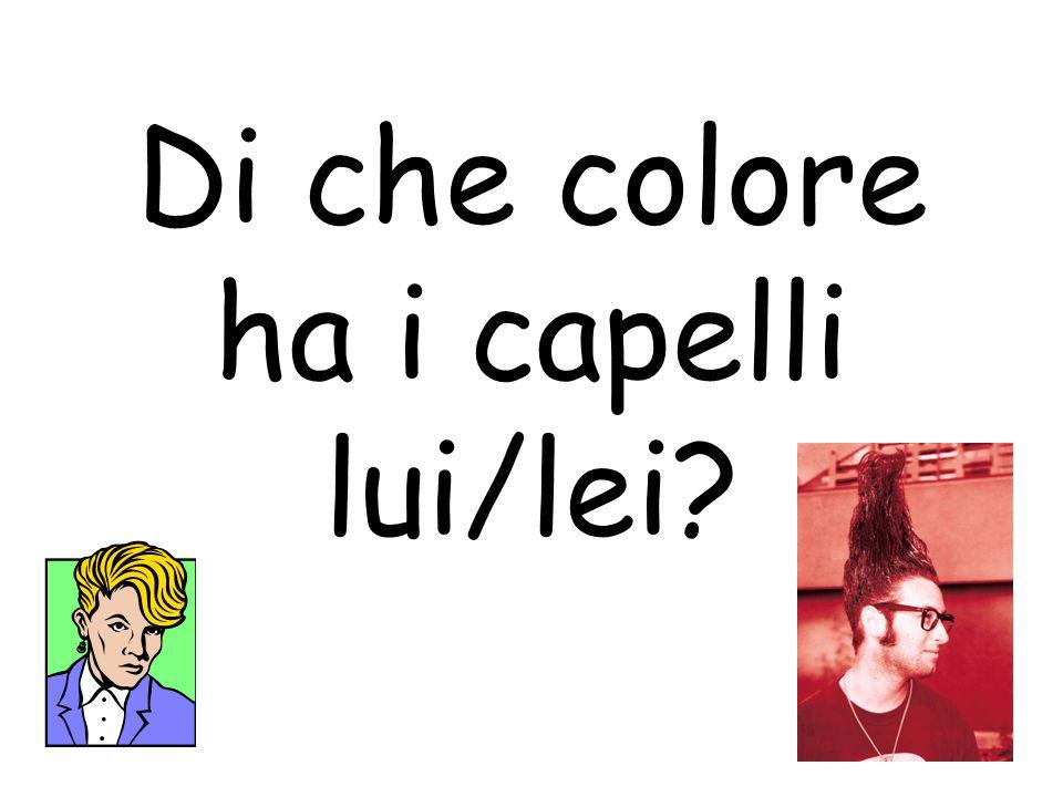 Di che colore ha i capelli lui/lei?