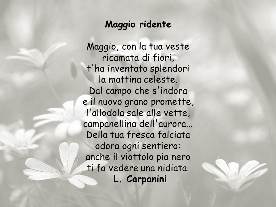 Maggio ridente Maggio, con la tua veste ricamata di fiori, t ha inventato splendori la mattina celeste.