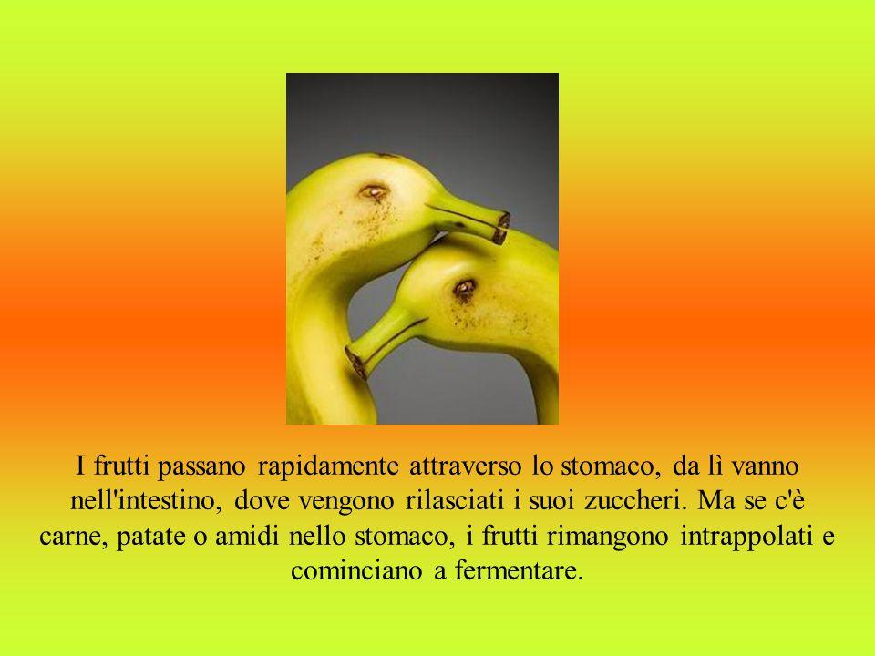 I frutti passano rapidamente attraverso lo stomaco, da lì vanno nell intestino, dove vengono rilasciati i suoi zuccheri.