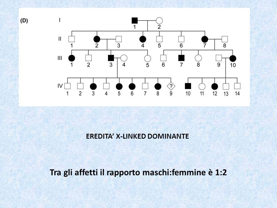 EREDITA' X-LINKED DOMINANTE Tra gli affetti il rapporto maschi:femmine è 1:2