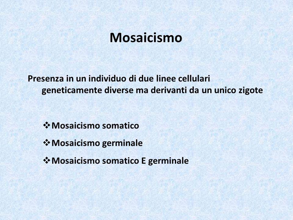 Mosaicismo Presenza in un individuo di due linee cellulari geneticamente diverse ma derivanti da un unico zigote  Mosaicismo somatico  Mosaicismo ge