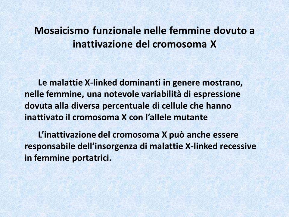 Mosaicismo funzionale nelle femmine dovuto a inattivazione del cromosoma X Le malattie X-linked dominanti in genere mostrano, nelle femmine, una notev