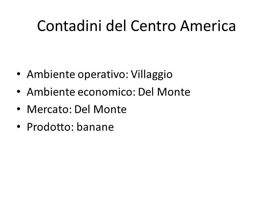 Contadini del Centro America Ambiente operativo: Villaggio Ambiente economico: Del Monte Mercato: Del Monte Prodotto: banane