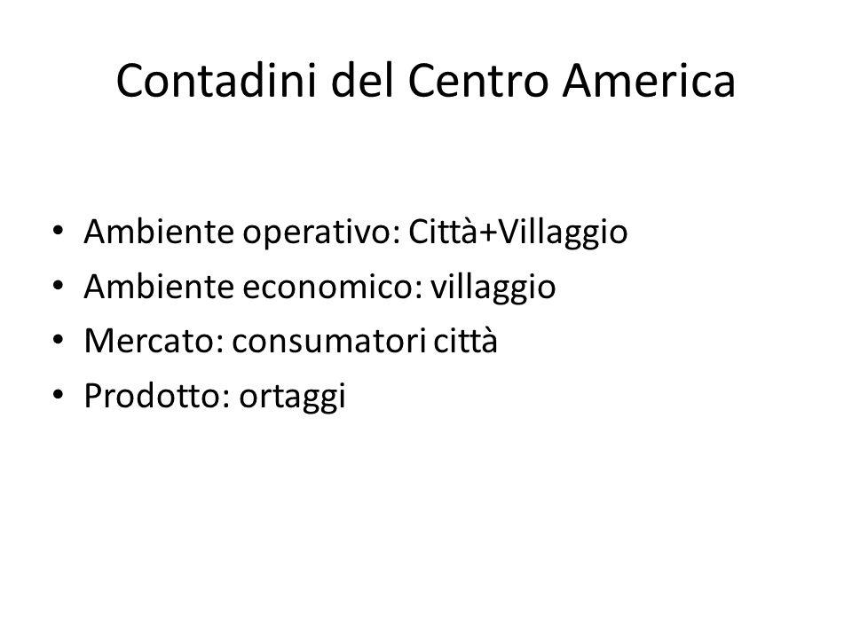 Contadini del Centro America Ambiente operativo: Città+Villaggio Ambiente economico: villaggio Mercato: consumatori città Prodotto: ortaggi