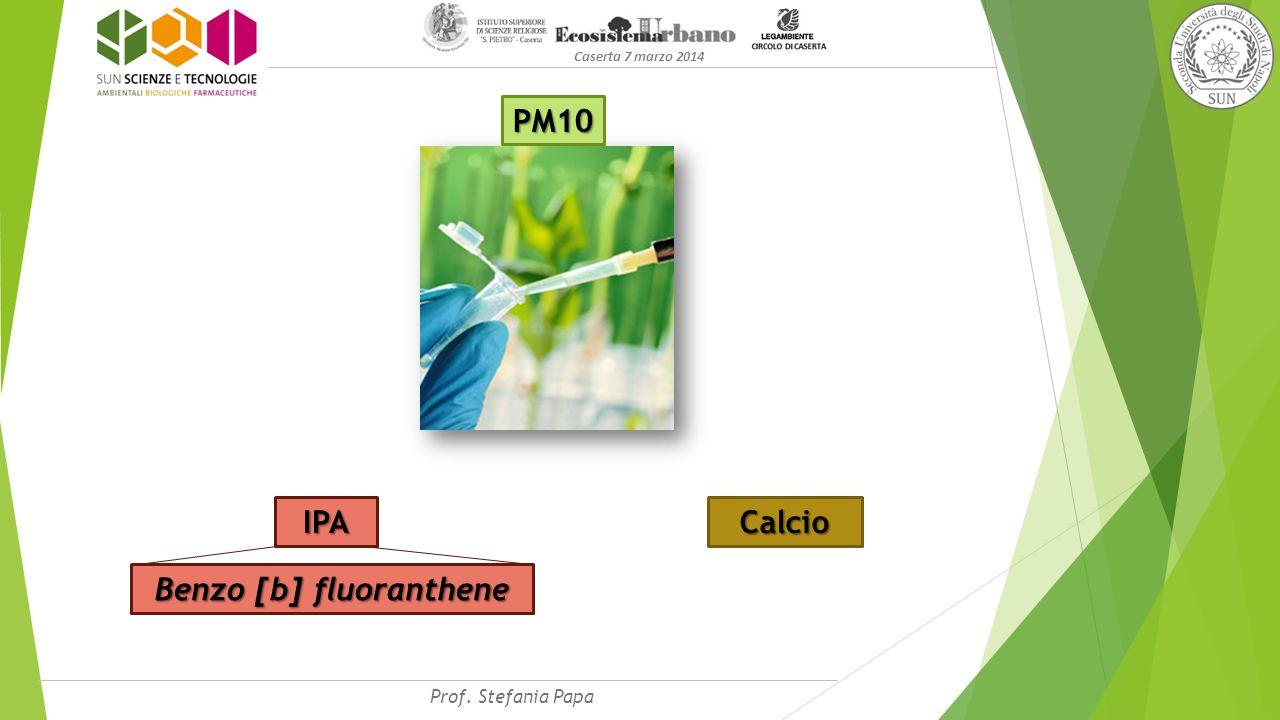 Caserta 7 marzo 2014 PM10 Calcio IPA Benzo [b] fluoranthene Prof. Stefania Papa