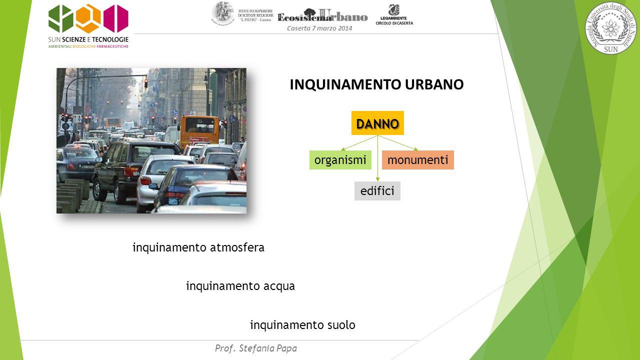 Caserta 7 marzo 2014 INQUINAMENTO URBANO DANNO edifici monumentiorganismi inquinamento atmosfera inquinamento acqua inquinamento suolo Prof.