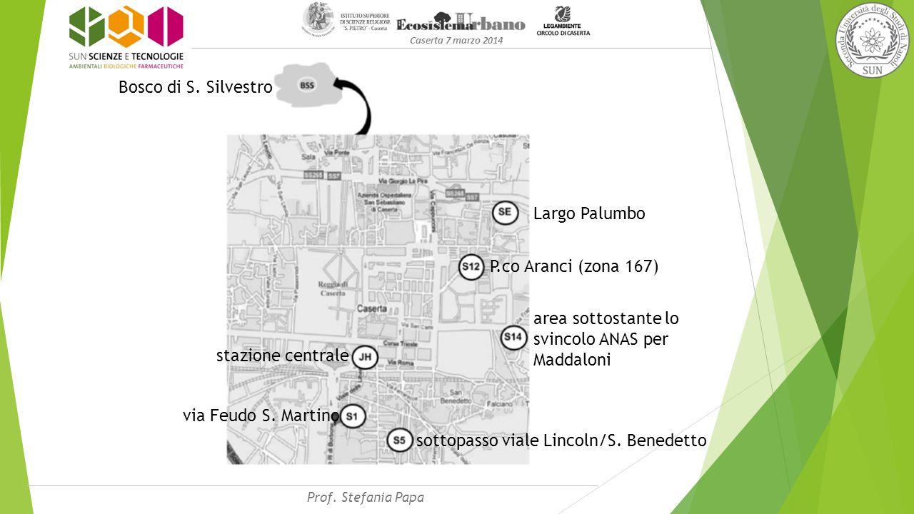 Caserta 7 marzo 2014 via Feudo S. Martino sottopasso viale Lincoln/S.