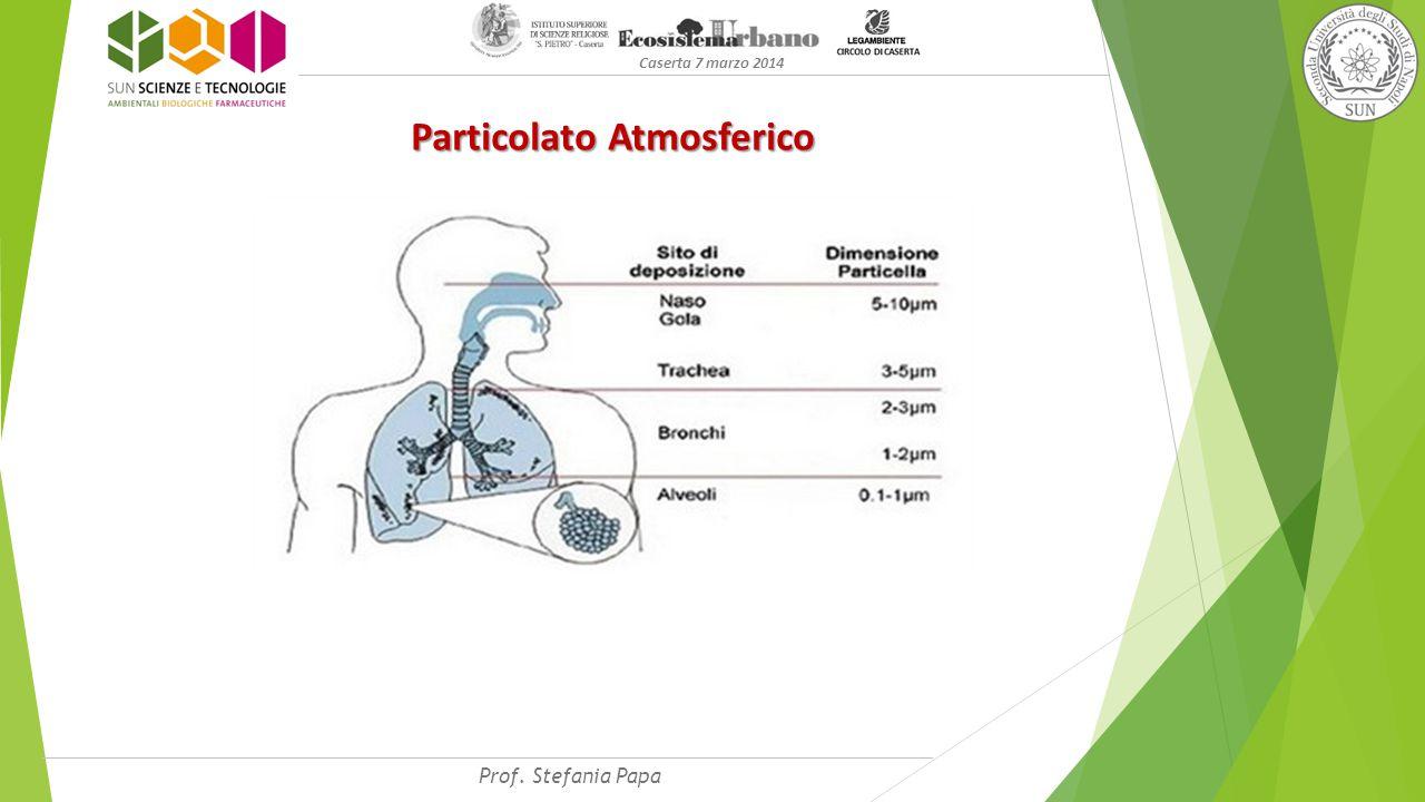 Caserta 7 marzo 2014 Particolato Atmosferico Prof. Stefania Papa