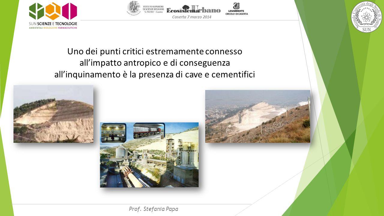 Caserta 7 marzo 2014 Uno dei punti critici estremamente connesso all'impatto antropico e di conseguenza all'inquinamento è la presenza di cave e cementifici Prof.