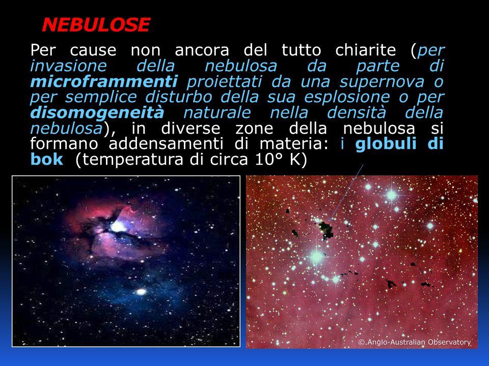 NEBULOSE Per cause non ancora del tutto chiarite (per invasione della nebulosa da parte di microframmenti proiettati da una supernova o per semplice disturbo della sua esplosione o per disomogeneità naturale nella densità della nebulosa), in diverse zone della nebulosa si formano addensamenti di materia: i globuli di bok (temperatura di circa 10° K)