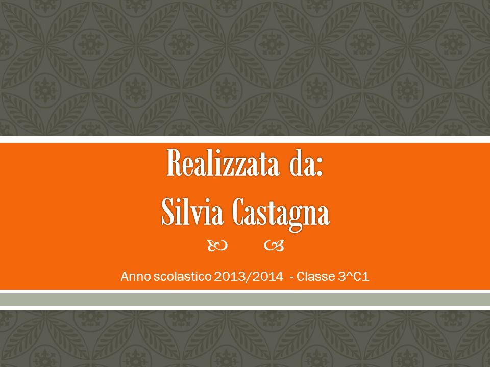  Anno scolastico 2013/2014 - Classe 3^C1