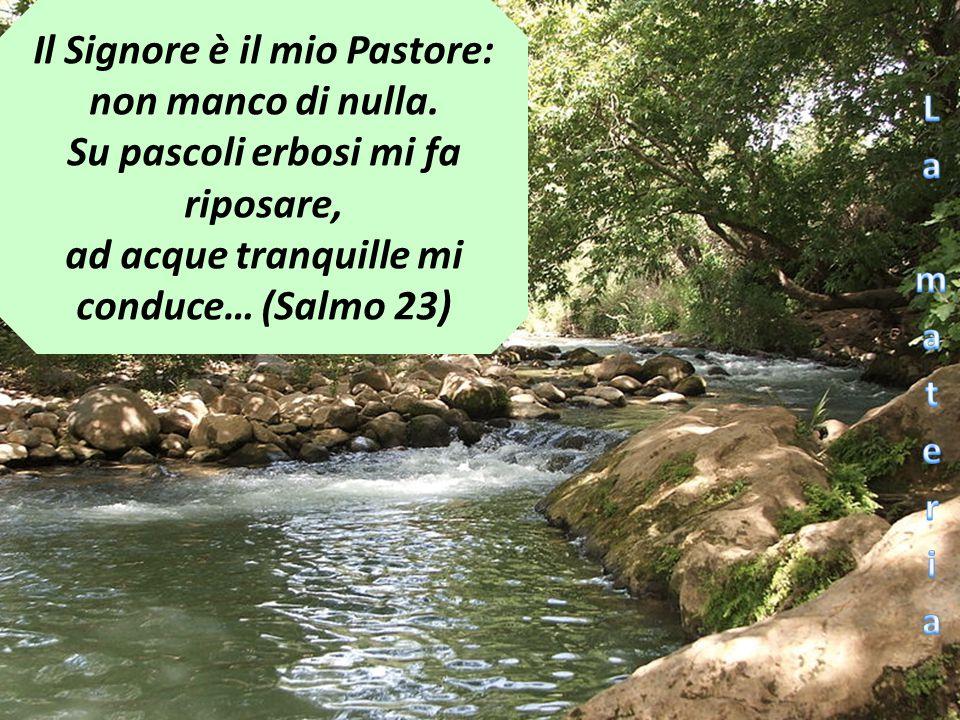 Il Signore è il mio Pastore: non manco di nulla. Su pascoli erbosi mi fa riposare, ad acque tranquille mi conduce… (Salmo 23)