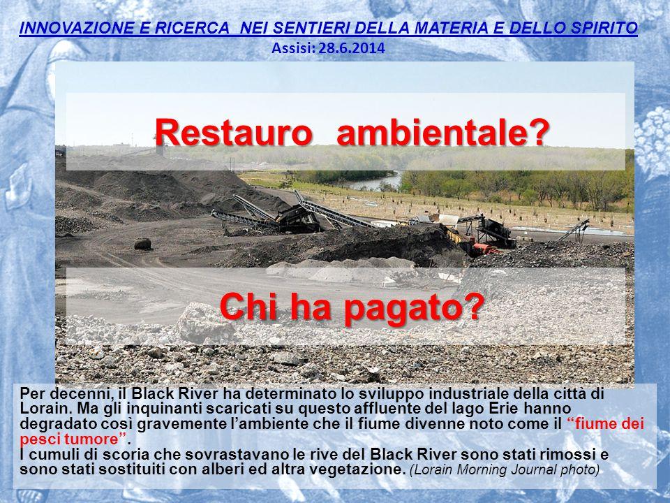 INNOVAZIONE E RICERCA NEI SENTIERI DELLA MATERIA E DELLO SPIRITO Assisi: 28.6.2014 17 Restauro ambientale.