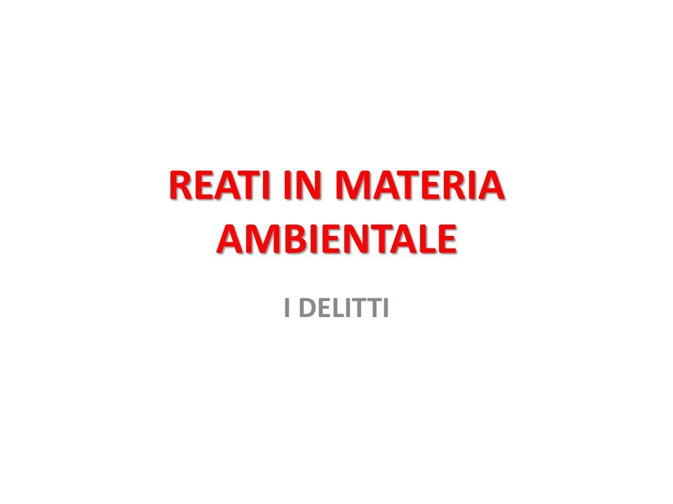 DISASTRO AMBIENTALE: QUESTIONE DI LEGITTIMITA' COSTITUZIONALE Quindi, l'art.