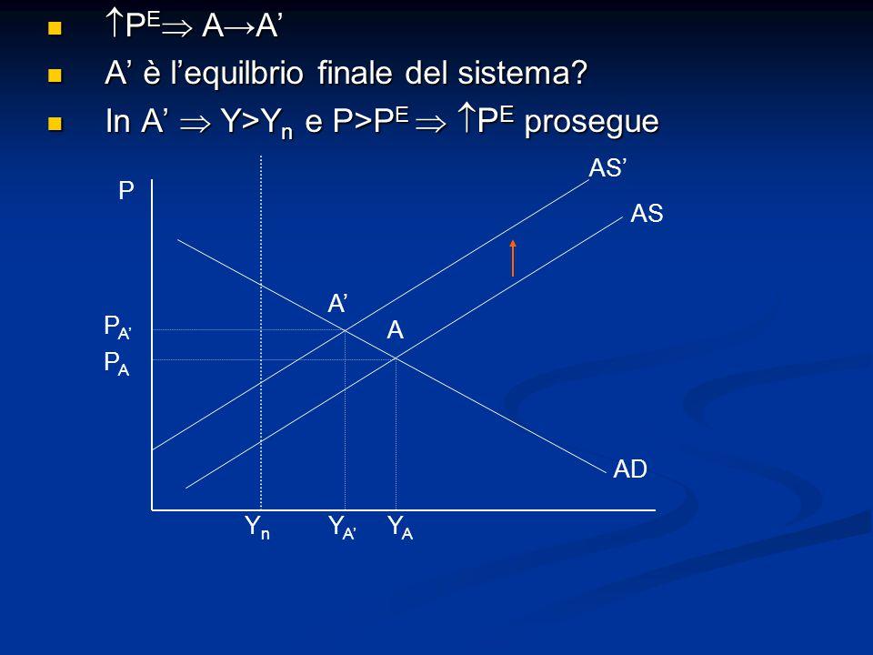 P PAPA P A' A' A YnYn Y A' YAYA AD AS AS'  P E  A→A'  P E  A→A' A' è l'equilbrio finale del sistema.