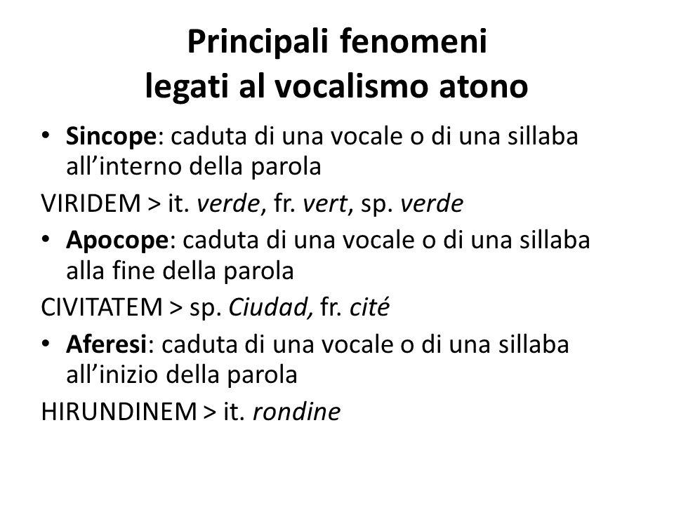 Principali fenomeni legati al vocalismo atono Sincope: caduta di una vocale o di una sillaba all'interno della parola VIRIDEM > it. verde, fr. vert, s