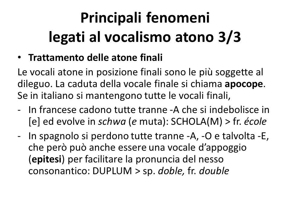 Principali fenomeni legati al vocalismo atono 3/3 Trattamento delle atone finali Le vocali atone in posizione finali sono le più soggette al dileguo.