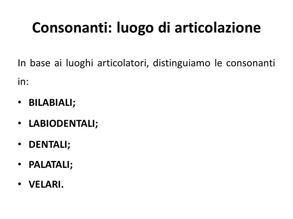 Consonanti: luogo di articolazione In base ai luoghi articolatori, distinguiamo le consonanti in: BILABIALI; LABIODENTALI; DENTALI; PALATALI; VELARI.