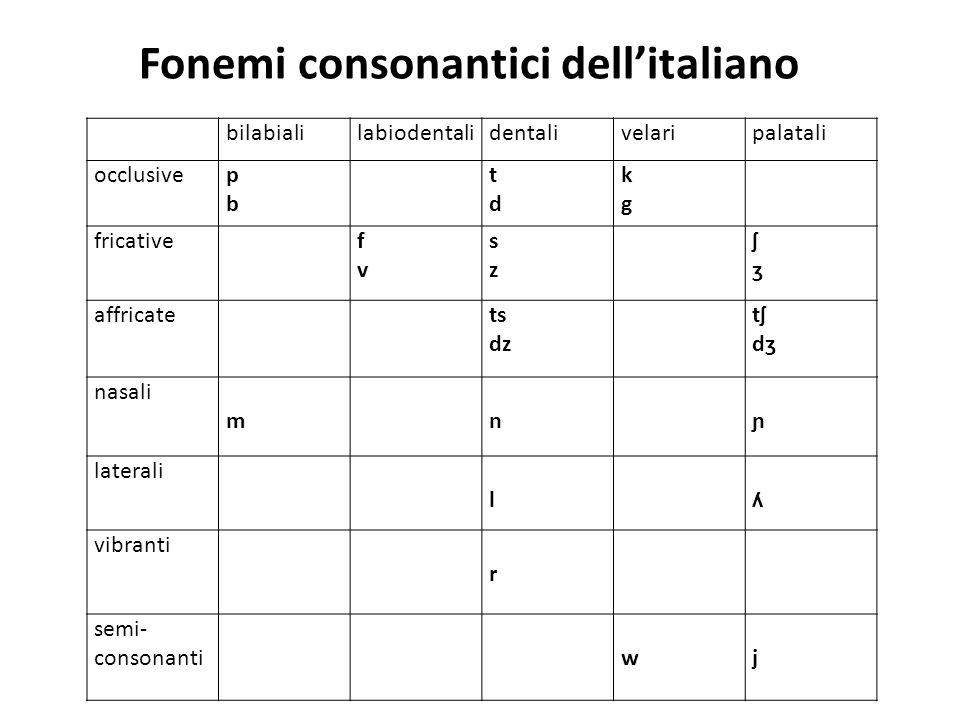 Fonemi consonantici dell'italiano bilabialilabiodentalidentalivelaripalatali occlusive pbpb tdtd kgkg fricative fvfv szsz ʃʒʃʒ affricate ts dz tʃdʒtʃd