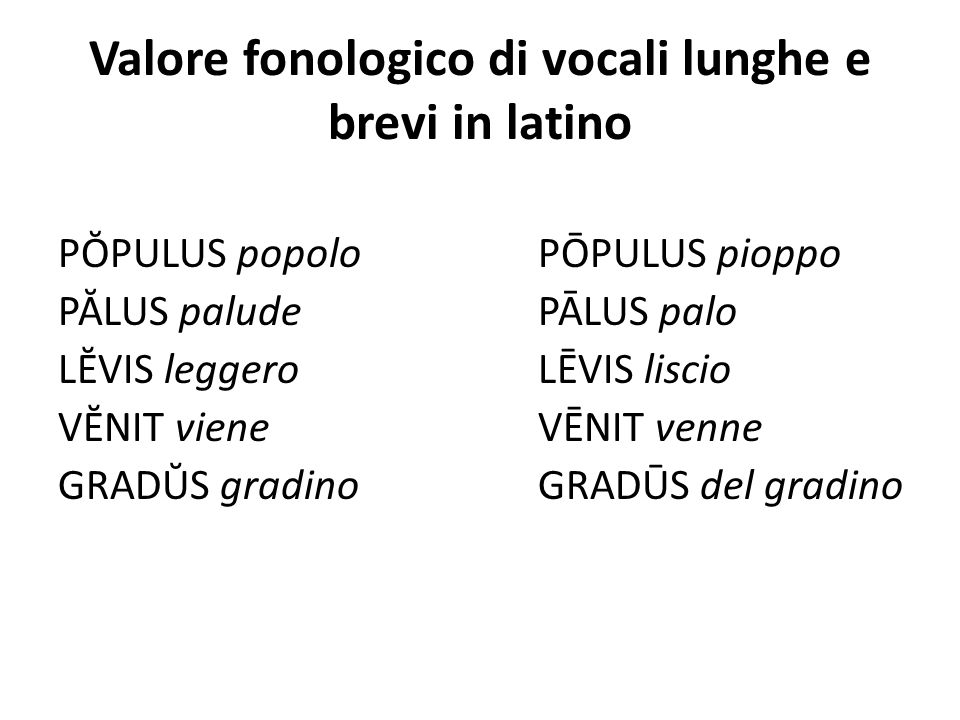 Valore fonologico di vocali lunghe e brevi in latino PŎPULUS popolo PŌPULUS pioppo PĂLUS palude PĀLUS palo LĔVIS leggero LĒVIS liscio VĔNIT viene VĒNI