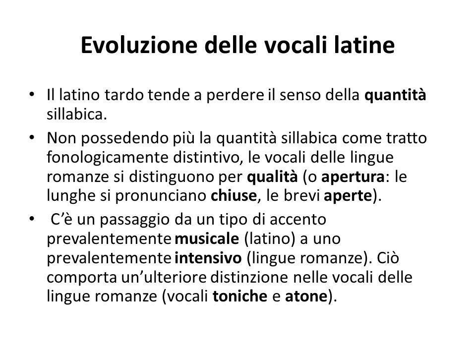 Evoluzione delle vocali latine Il latino tardo tende a perdere il senso della quantità sillabica. Non possedendo più la quantità sillabica come tratto