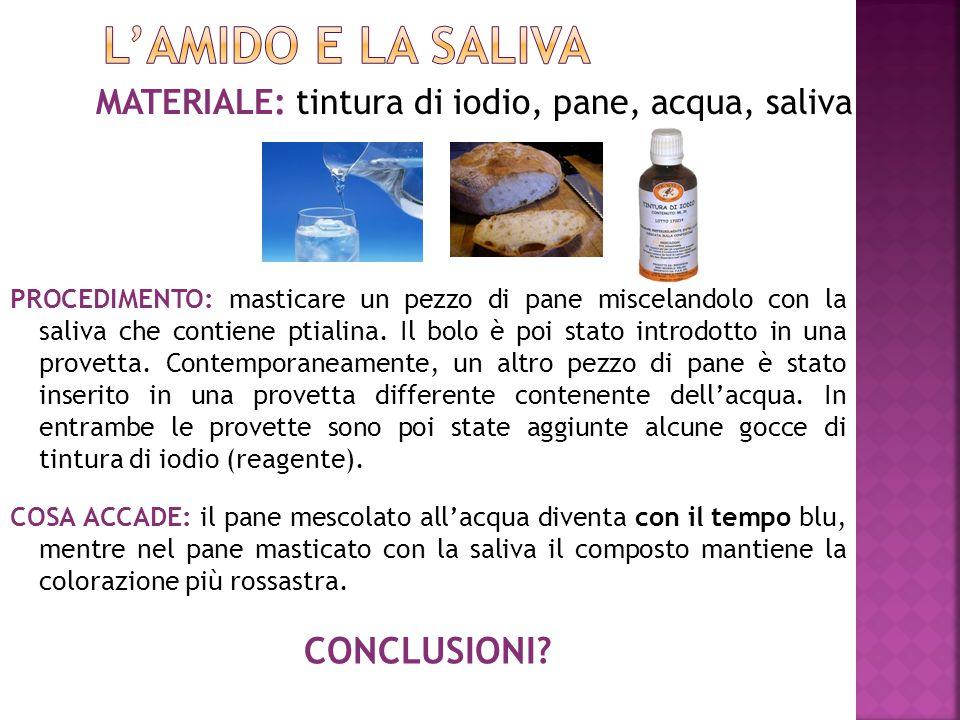 MATERIALE: tintura di iodio, pane, acqua, saliva PROCEDIMENTO: masticare un pezzo di pane miscelandolo con la saliva che contiene ptialina. Il bolo è