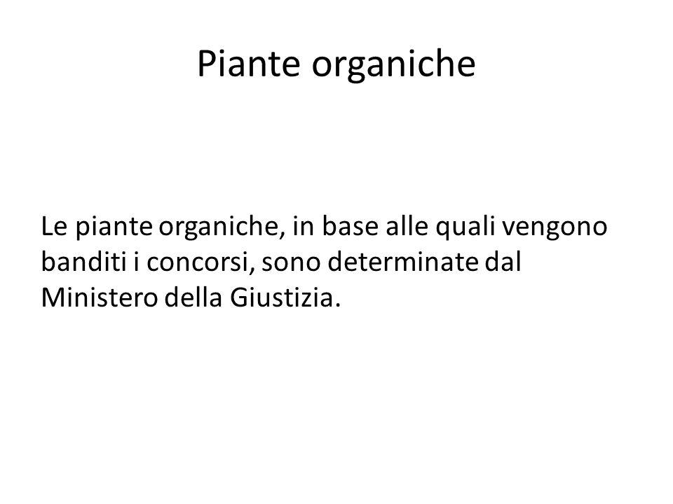 Piante organiche Le piante organiche, in base alle quali vengono banditi i concorsi, sono determinate dal Ministero della Giustizia.