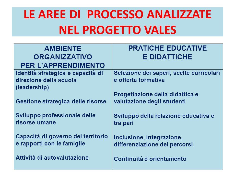 LE AREE DI PROCESSO ANALIZZATE NEL PROGETTO VALES AMBIENTE ORGANIZZATIVO PER L'APPRENDIMENTO PRATICHE EDUCATIVE E DIDATTICHE Identità strategica e cap
