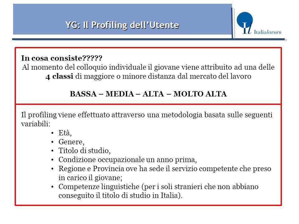YG: Il Profiling dell'Utente In cosa consiste????.