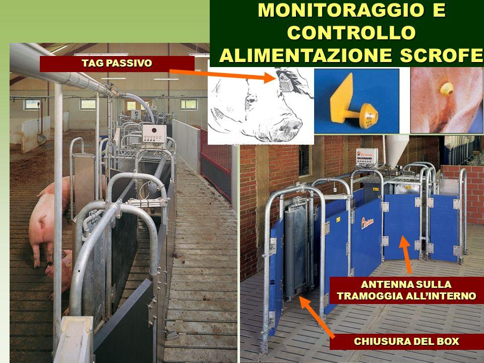 TAG PASSIVO CHIUSURA DEL BOX ANTENNA SULLA TRAMOGGIA ALL'INTERNO MONITORAGGIO E CONTROLLO ALIMENTAZIONE SCROFE