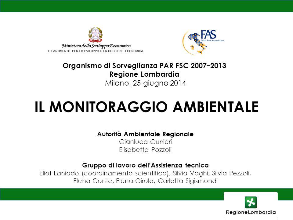 IL MONITORAGGIO AMBIENTALE Autorità Ambientale Regionale Gianluca Gurrieri Elisabetta Pozzoli Gruppo di lavoro dell'Assistenza tecnica Eliot Laniado (