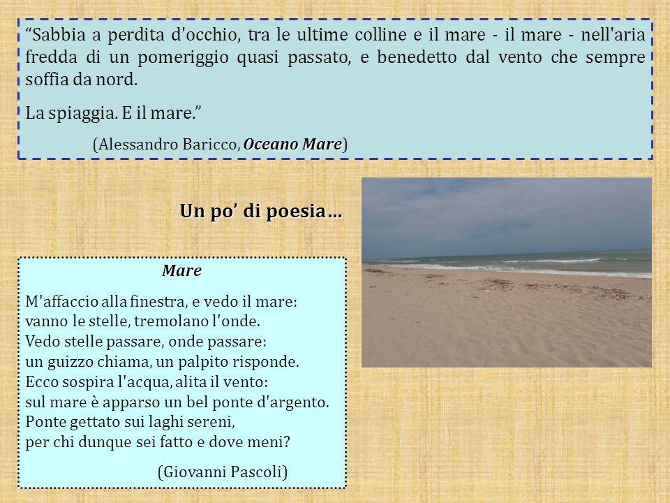 In Sicilia, in provincia di Agrigento, troviamo la Riserva Naturale Orientata di Torre Salsa, un'area incontaminata che si estende tra Siculiana Marina ed Eraclea Minoa.