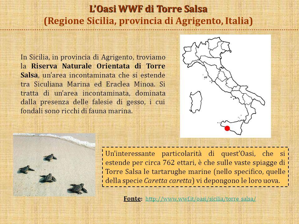 In Sicilia, in provincia di Agrigento, troviamo la Riserva Naturale Orientata di Torre Salsa, un'area incontaminata che si estende tra Siculiana Marin