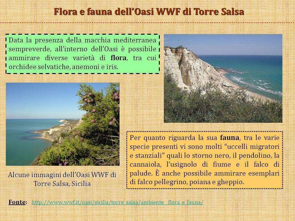 Flora e fauna dell'Oasi WWF di Torre Salsa Data la presenza della macchia mediterranea sempreverde, all'interno dell'Oasi è possibile ammirare diverse