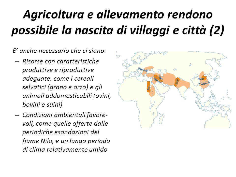 Agricoltura e allevamento rendono possibile la nascita di villaggi e città (2) E' anche necessario che ci siano: – Risorse con caratteristiche produtt