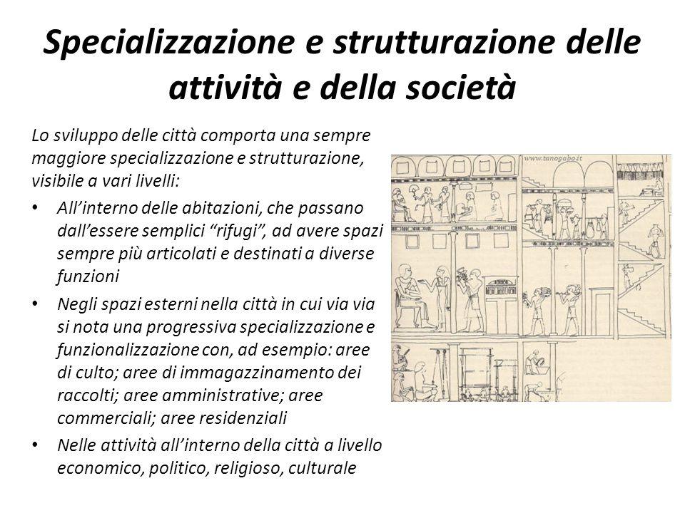 Specializzazione e strutturazione delle attività e della società Lo sviluppo delle città comporta una sempre maggiore specializzazione e strutturazion