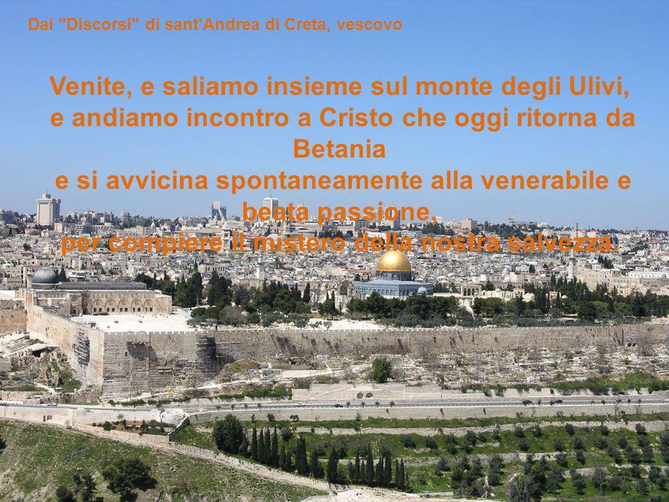 Viene di sua spontanea volontà verso Gerusalemme.