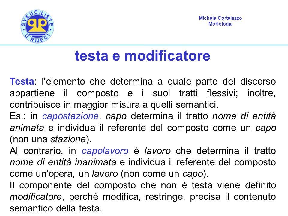 Michele Cortelazzo Morfologia testa e modificatore Testa: l'elemento che determina a quale parte del discorso appartiene il composto e i suoi tratti f