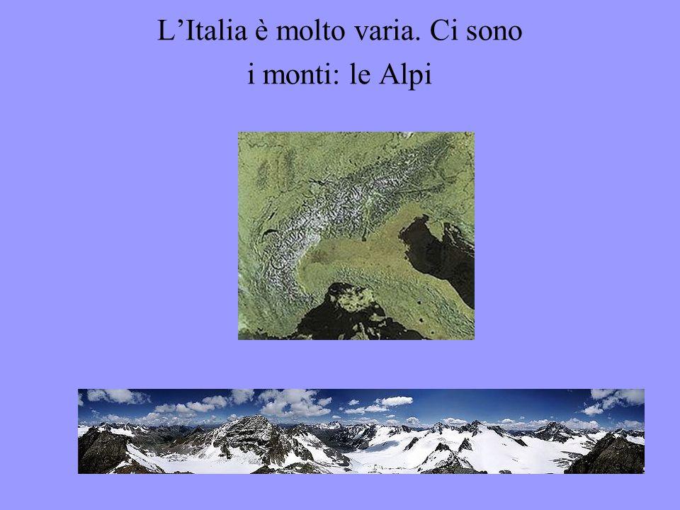 L'Italia ha 60 milioni di abitanti Gli stranieri sono il 7% I paesi da cui provengono sono soprattutto la Romania, il Marocco, la Cina, l'Ucraina In Italia si parla la stessa lingua, ma ci sono molti dialetti a volte anche molto diversi dall'italiano