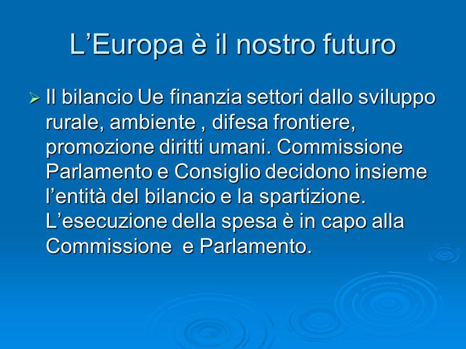 L'Europa è il nostro futuro  Il bilancio Ue finanzia settori dallo sviluppo rurale, ambiente, difesa frontiere, promozione diritti umani.