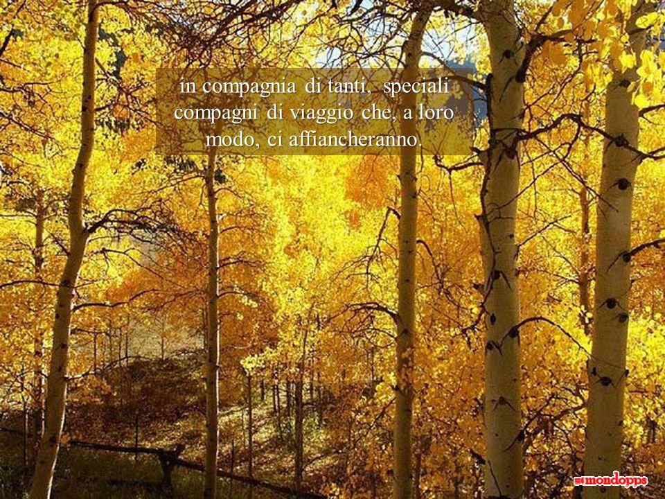 """Perché pur con le incertezze e le incognite che il vivere reca in sé, stiamo compiendo un bellissimo, irripetibile """"viaggio"""" attraverso le stagioni de"""