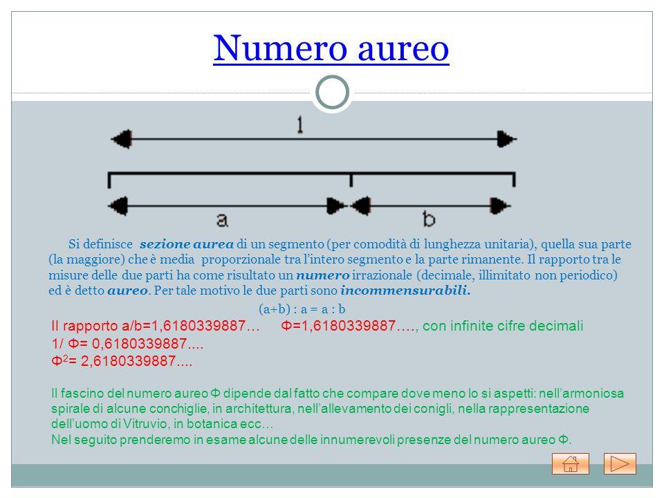 Numero aureo Si definisce sezione aurea di un segmento (per comodità di lunghezza unitaria), quella sua parte (la maggiore) che è media proporzionale tra l'intero segmento e la parte rimanente.
