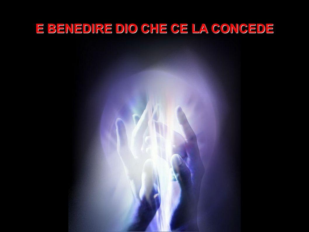 GLI UCCELLI AL PRIMO RAGGIO DI SOLE BENEDICONO LA LUCE CANTANDO.